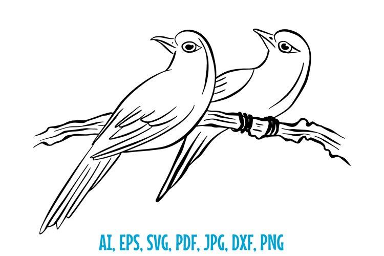Love Birds in a Tree Line Art Illustration SVG etc