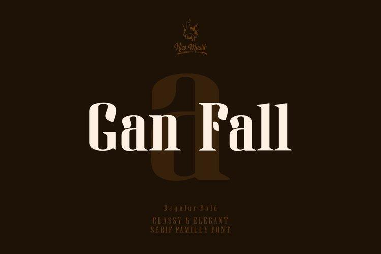 Gan Fall    Serif Condensed Font example image 1