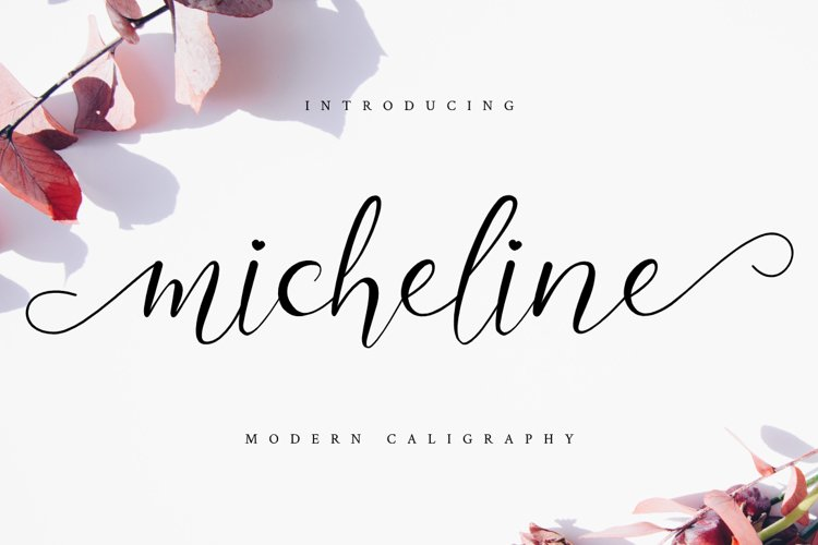 Micheline example image 1