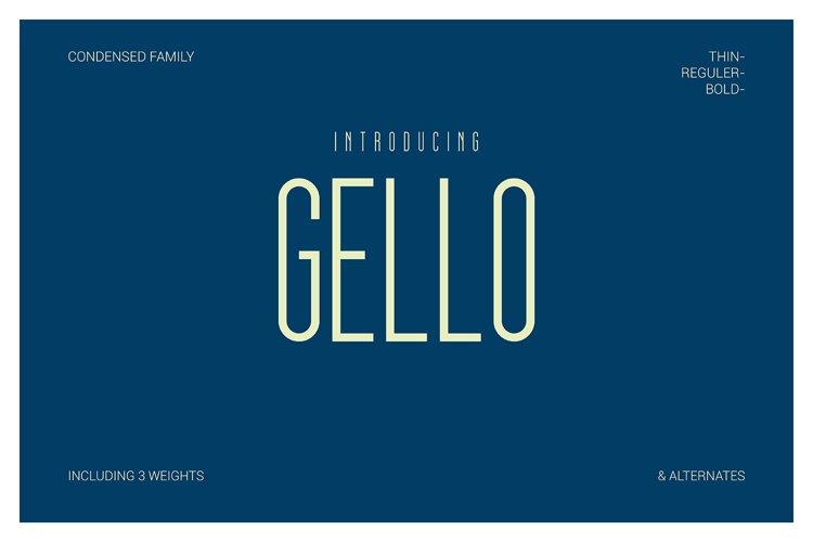 GELLO example image 1