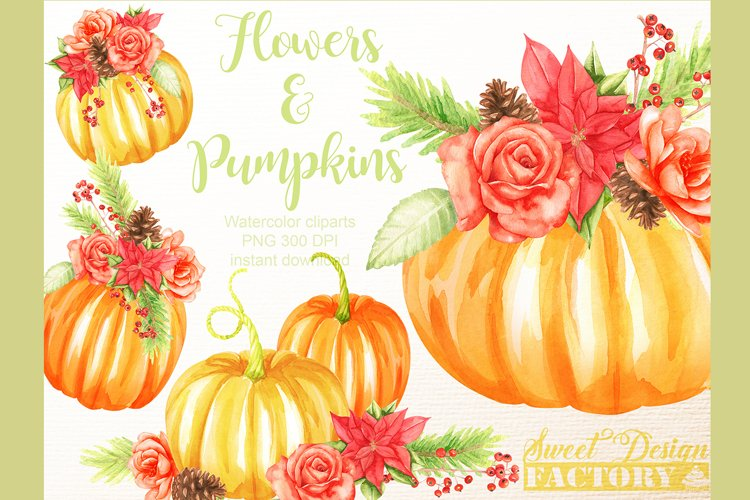 thanksgiving pumkins Watercolor clipart example image 1