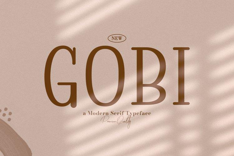 Gobi example image 1
