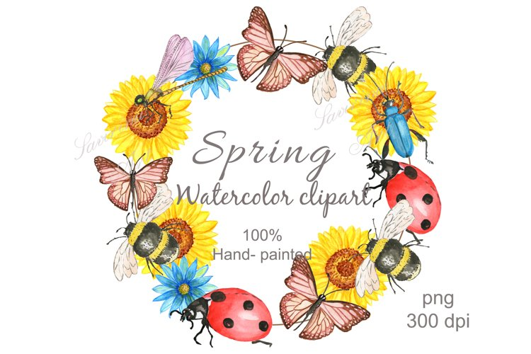 Watercolor clipart, Bee , Flower ,Spring .