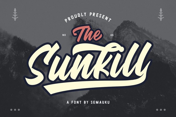 Sunkill Script Font example image 1