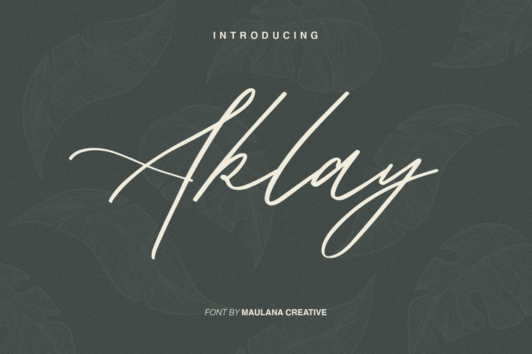 Aklay - Handwritten Font example image 1
