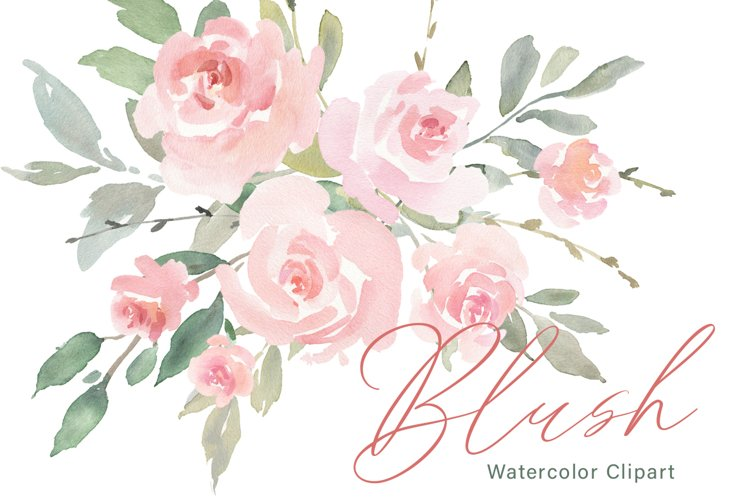 Pink Blush Watercolor Flowers Roses PNG Collection example image 1