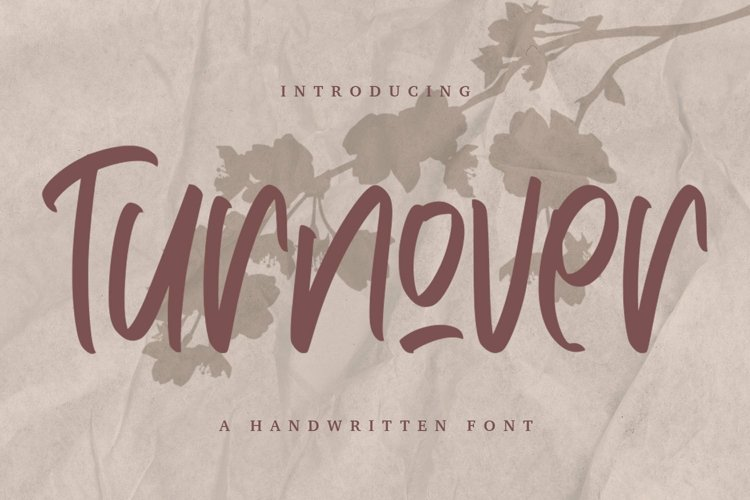 Web Font Turnover - Handwritten Font example image 1