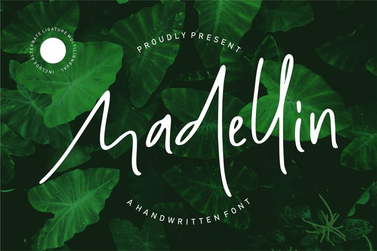 Web Font Madelin - Handwritten Font example image 1