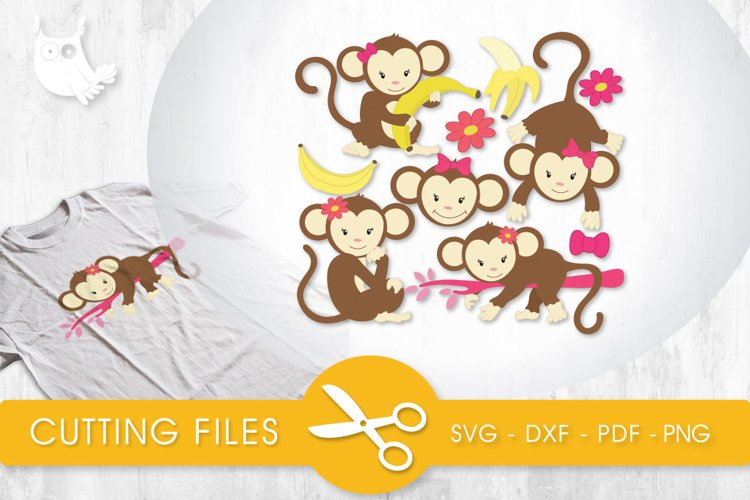 Girl Monkeys cutting files svg, dxf, pdf, eps included - cut files for cricut and silhouette - Cutting Files SVG example image 1