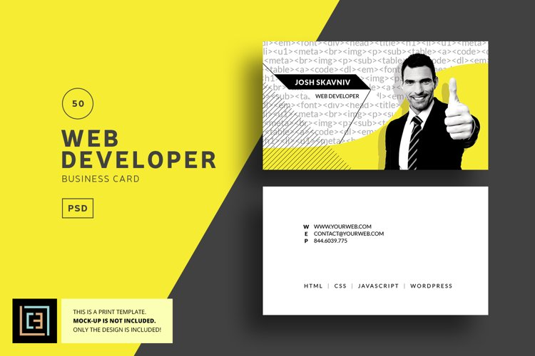Web Developer Business Card - BC050