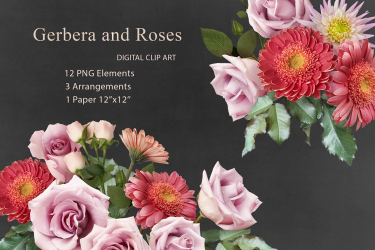 Gerbera and roses clipart. Floral arrangements.