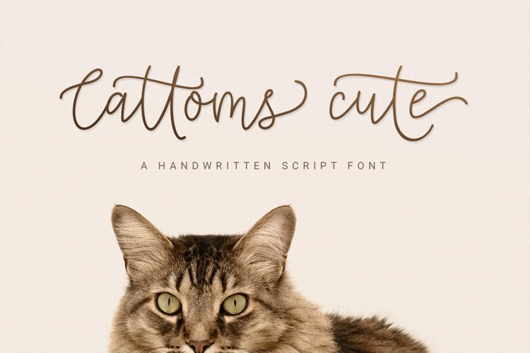 Cattoms Cute Script Fonts example image 1