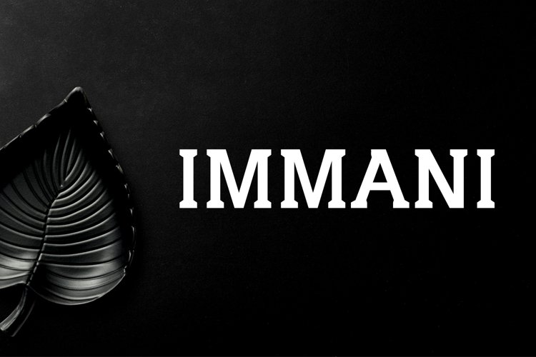 Immani Serif 2 Font Family Pack example image 1