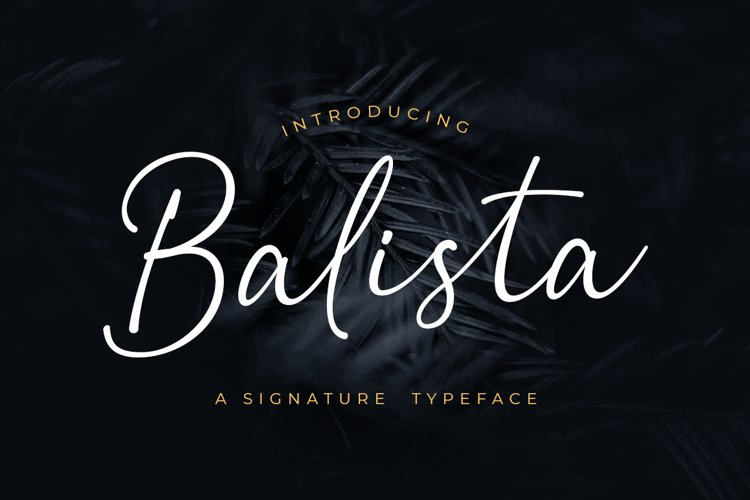 Balista - A Signature Typeface example image 1