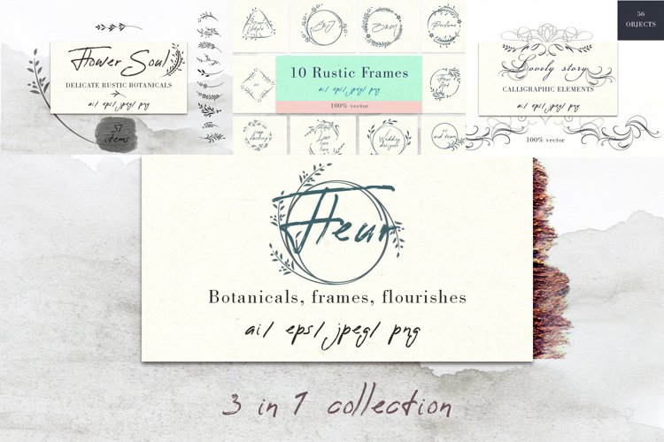 Bundle of vector rustic botanicals, frames and flourishes example image 1