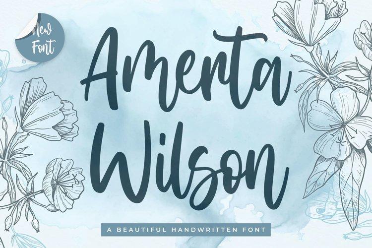 Modern Script Font - Amerta Wilson example image 1
