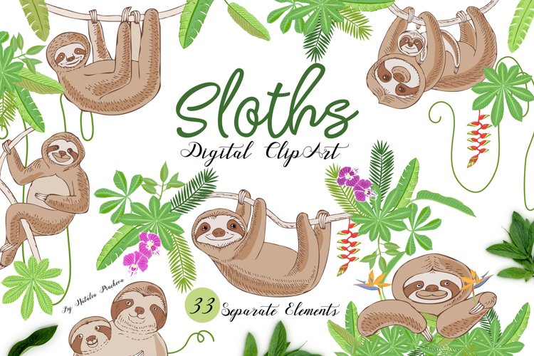 Sloths in Jungle Digital Clipart