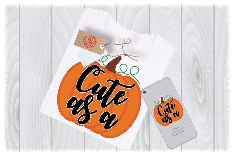 Cute as a Pumpkin SVG Files for Cricut Designs|Thanksgiving example image 1