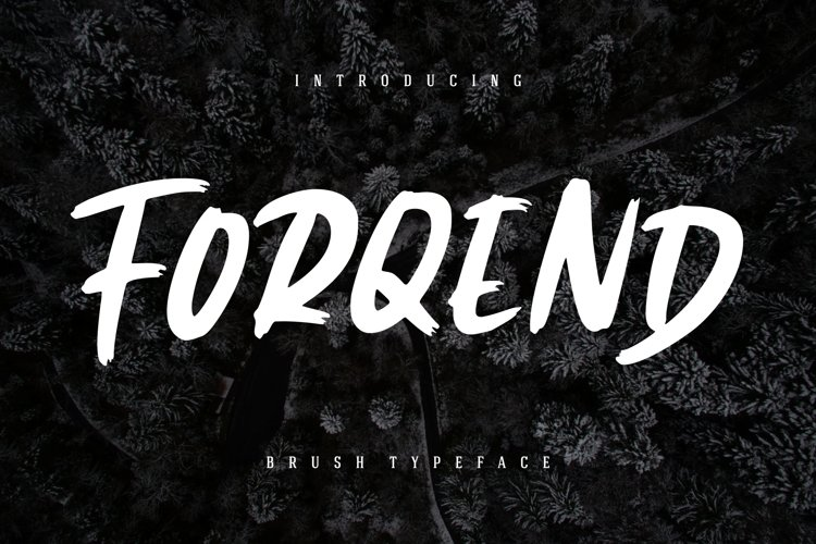 Forqend Brush Typeface example image 1