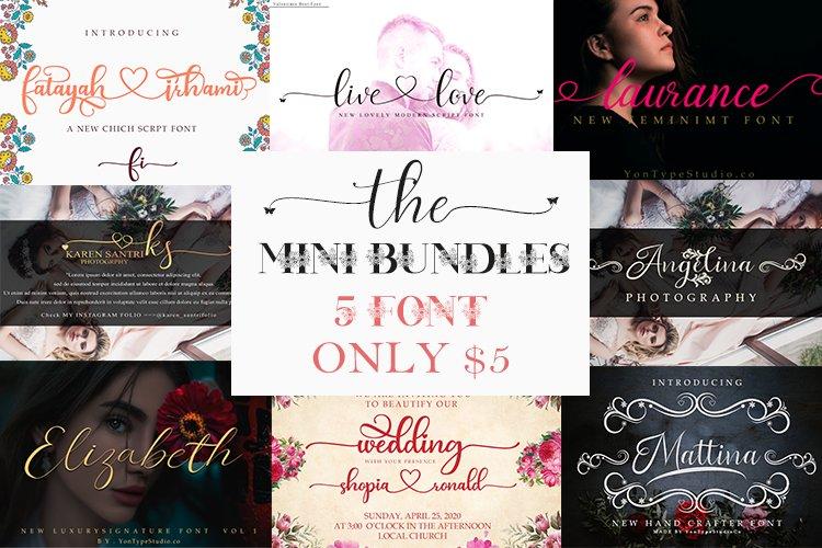 Mini Bundles 5 font script only $5 example image 1