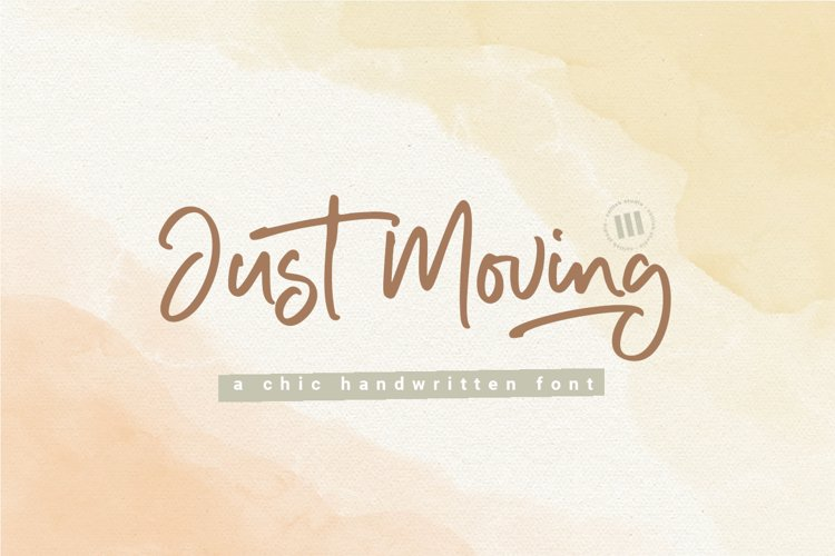 Just Moving- A Chic Handwritten Font example image 1