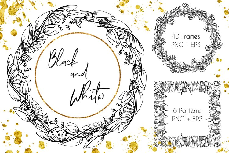 Black-White Floral Frames - Vector Set example image 1