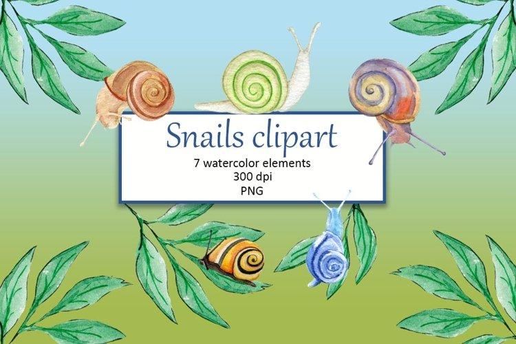 Watercolor snails clipart PNG