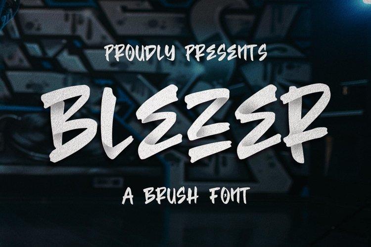 Blezer Brush Font example image 1