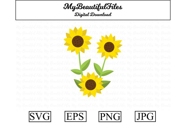 Sunflower SVG - Cute sunflower SVG, EPS, PNG and JPG