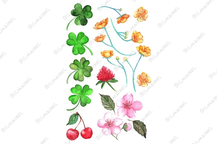 Flower clover cherry berry buttercup set clip art isolated example image 1