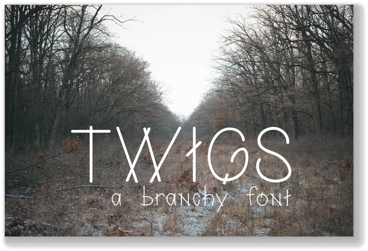 Twigs A Branchy Font example image 1