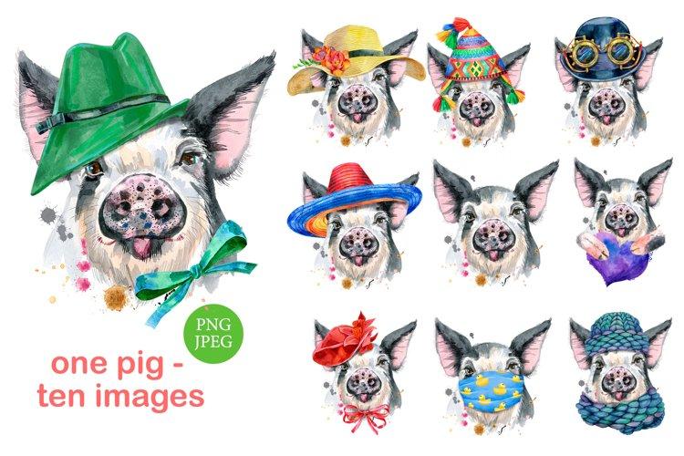 Cute watercolor pig example image 1
