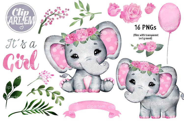 Cute Pink Floral Elephant Baby Shower Watercolor 16 PNG Set
