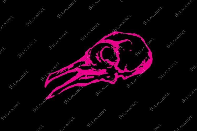 Monochrome skull of pigeon dove bird sketch vector example image 1