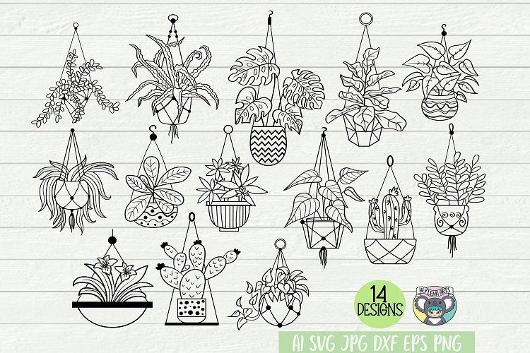 Hanging Plants Bundle svg, Potted Plants svg, Plants Lady