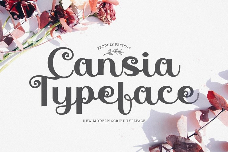 Web Font Cansia example image 1