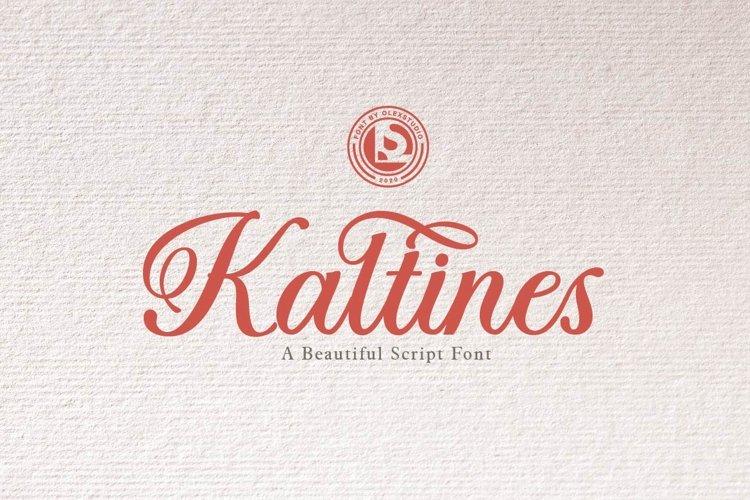KALTINES - Script Font example image 1