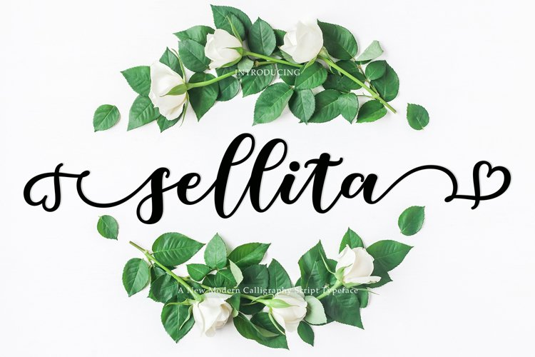 Beautiful New Sellita Script font