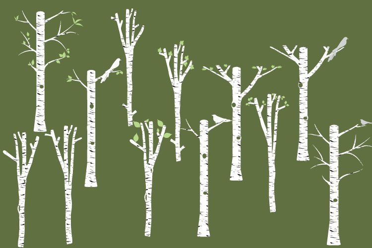 White Birch clipart, Tree clipart, Birch vector, Birch PNG example image 1