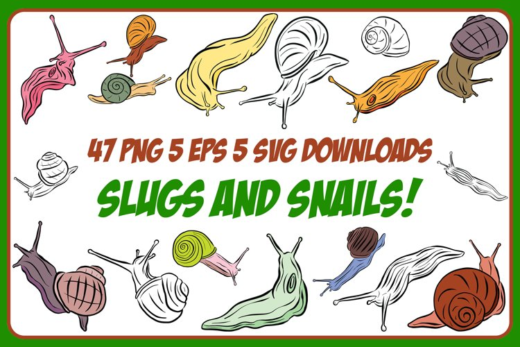 Cartoon Snails and Slugs Collection! EPS, PNG and SVG example image 1