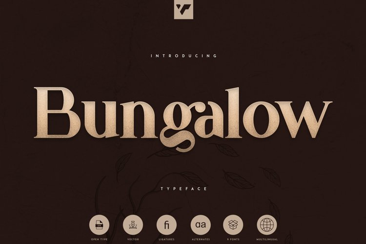 Bungalow Typeface - 9 fonts example image 1