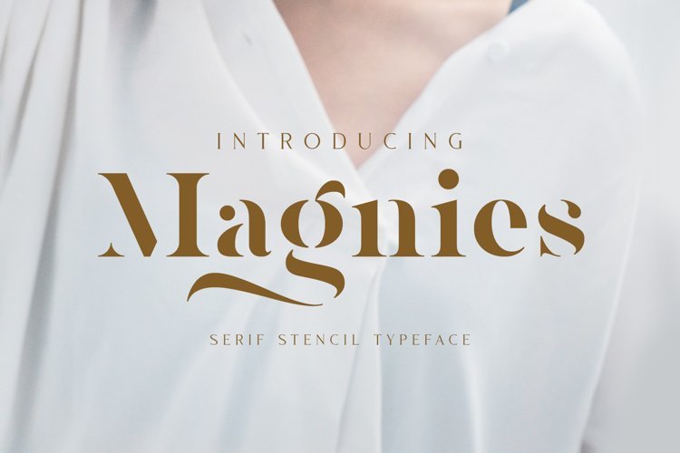Magnies - Minimal Serif example image 1