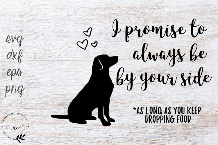 A Dog's Promise - Potholder Design SVG example image 1