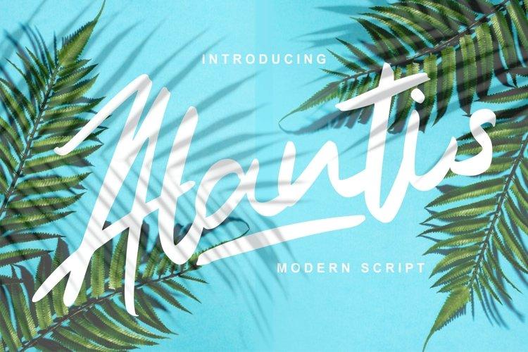 Alantis | Modern Script Font example image 1