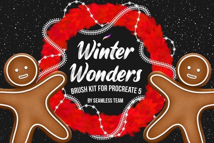 Winter Wonders Brush Kit for Procreate 5