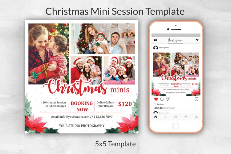 Christmas Mini Session Template example image 1