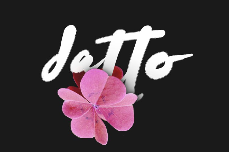 Datto Typeface example image 1