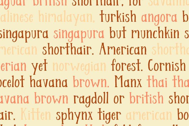 Streusel Kuchen Handwritten Serif Font example 4