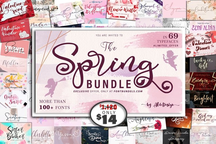 The 69 In 1 Spring Bundle - WEB FONT
