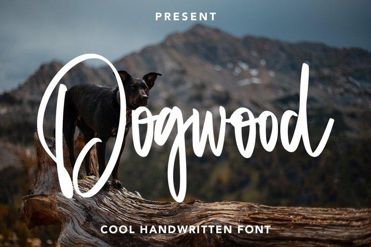 Web Font Dogwood - Cool Handwritten Font example image 1